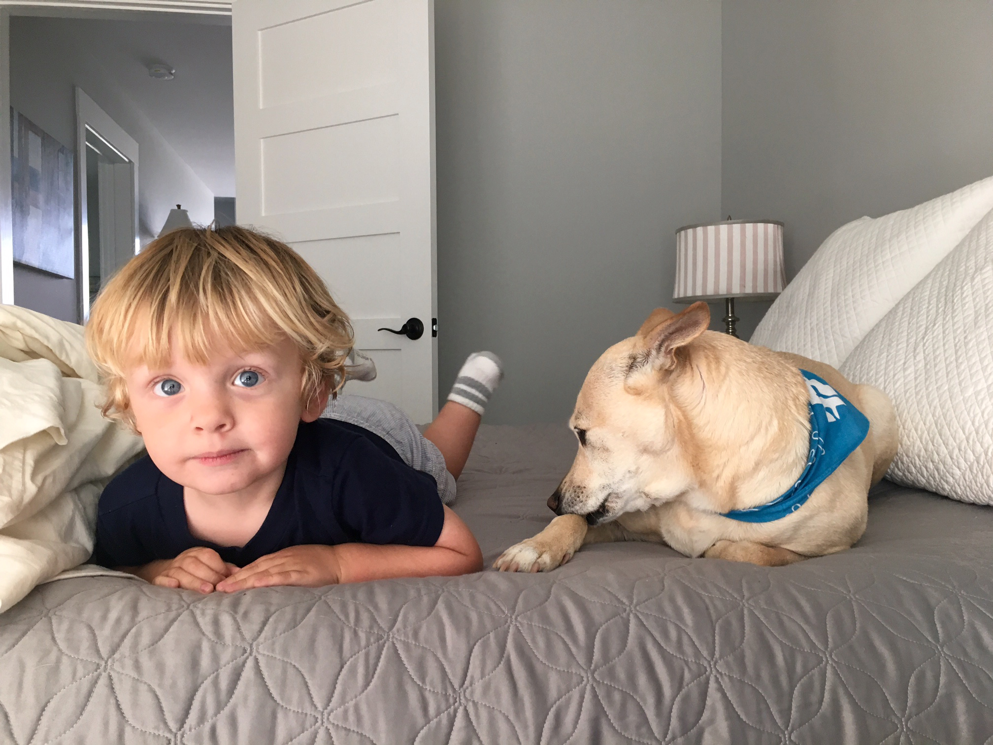 Hayden and Sebastian chillin' in the bed.