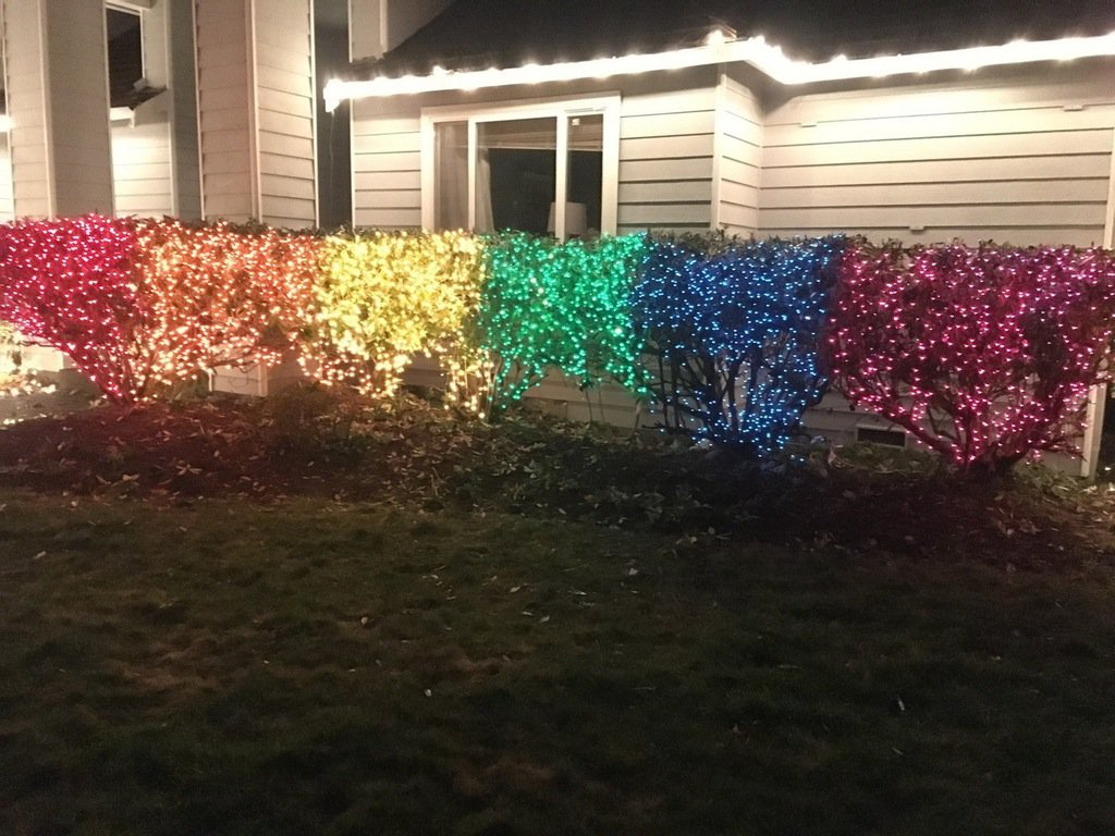 Seattle Woman Shuts Down Homophobic Neighbor With Christmas Display